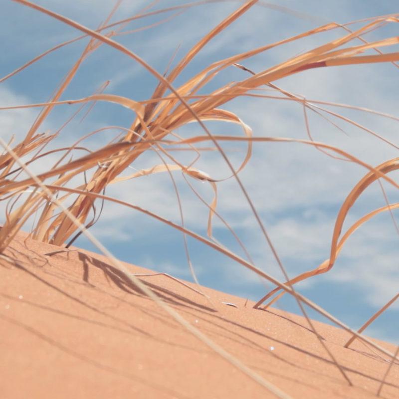badain jaran chine dune desert maroc olivier coste sisyphe explorer solar explorer mongolie trekking survie (15)